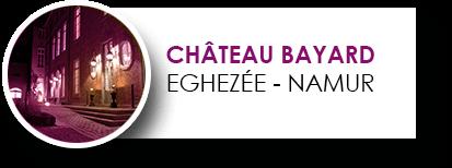 Nouvelan.Net Reveillon Château Bayard